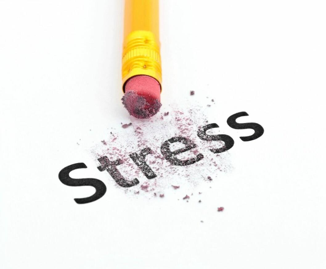 Stress-CB3261328
