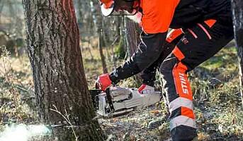 Bruk riktig verneutstyr når du rydder skog