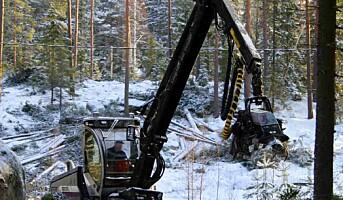 Måler stress blant skogsarbeidere