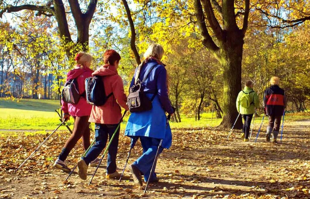 Spasertur-i-parken-2