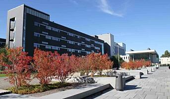 Større arbeidspress på sykehusene