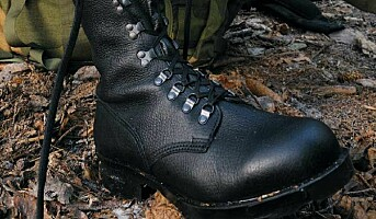 Alfa-støvlene igjen samlet i ett selskap