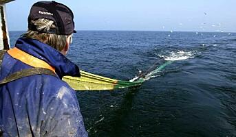 Mange skader i havbruk
