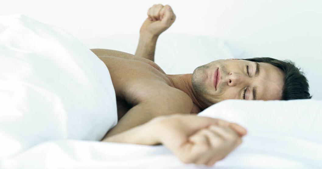 Søvn mann cb574896