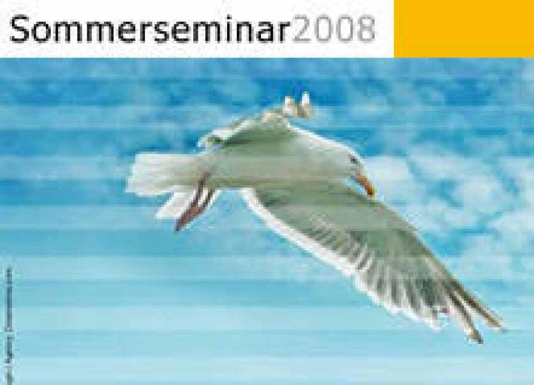 Sommersemina 2008 02