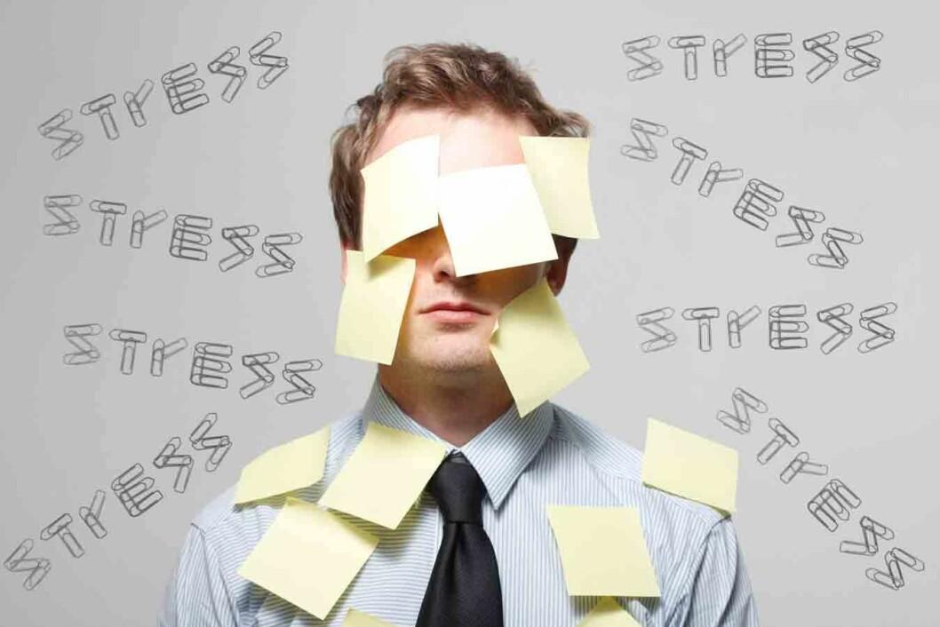 Stress-CB1177033