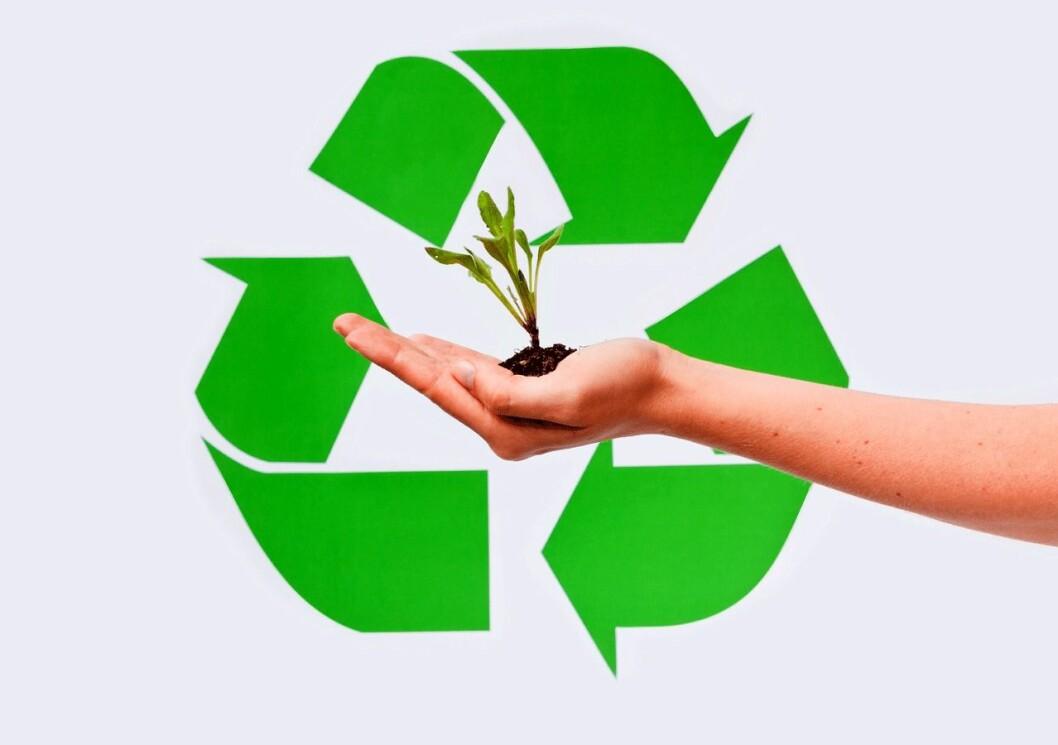 Miljøillustrasjon-CB4972853