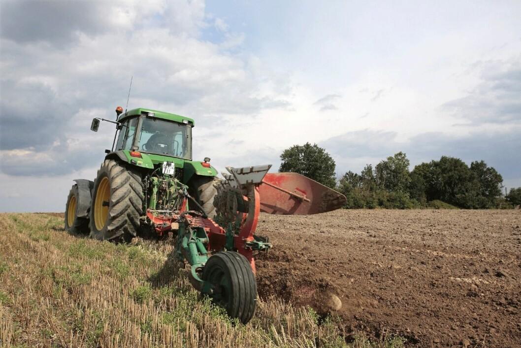Landbruk-CB958042