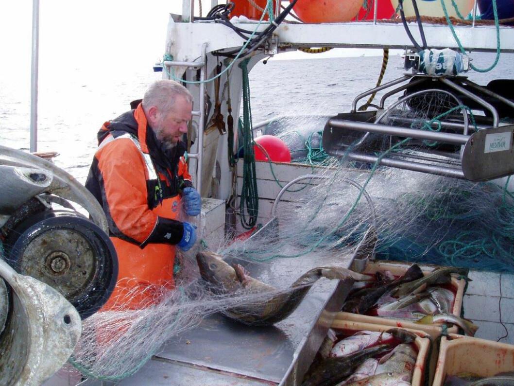 Fiskerne er mindre syke enn befolkningen for øvrig. (Foto: Halvard Aasjord, SINTEF Ocean)