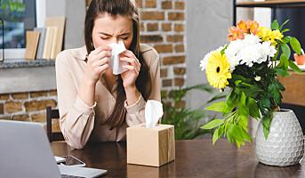 Slik takler du pollenallergi