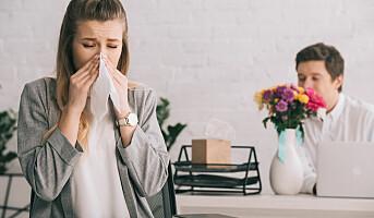 Pynt allergivennlig på kontoret