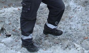 Svenske forskere vil sklimerke vintersko
