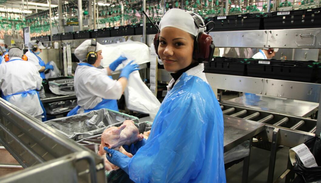 Blant de yngre som skader seg på jobb, arbeider mange i industrien og i byggebransjen