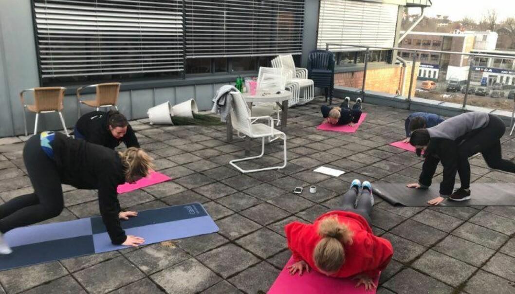 Når vinteren er over, kan det samme programmet og mange av øvelsene like gjerne utføres utendørs – gjerne i tilknytning til lunsjen.
